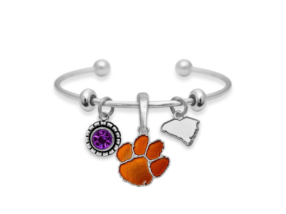 Picture for category Clemson Tigers